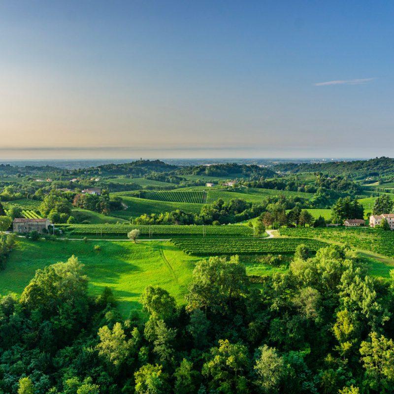 The Unesco Hills and the Territory - Visit Conegliano