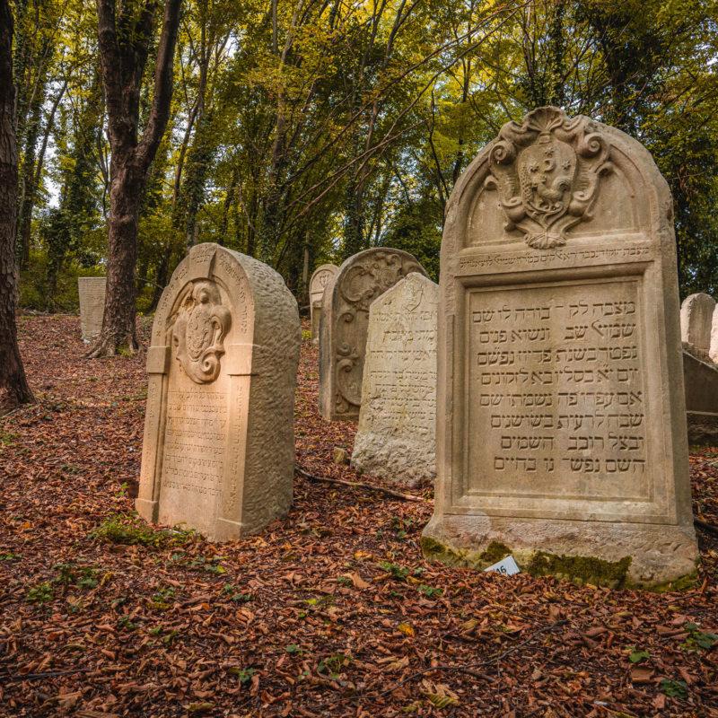 Besuche des jüdischen Friedhofs - Visit Conegliano
