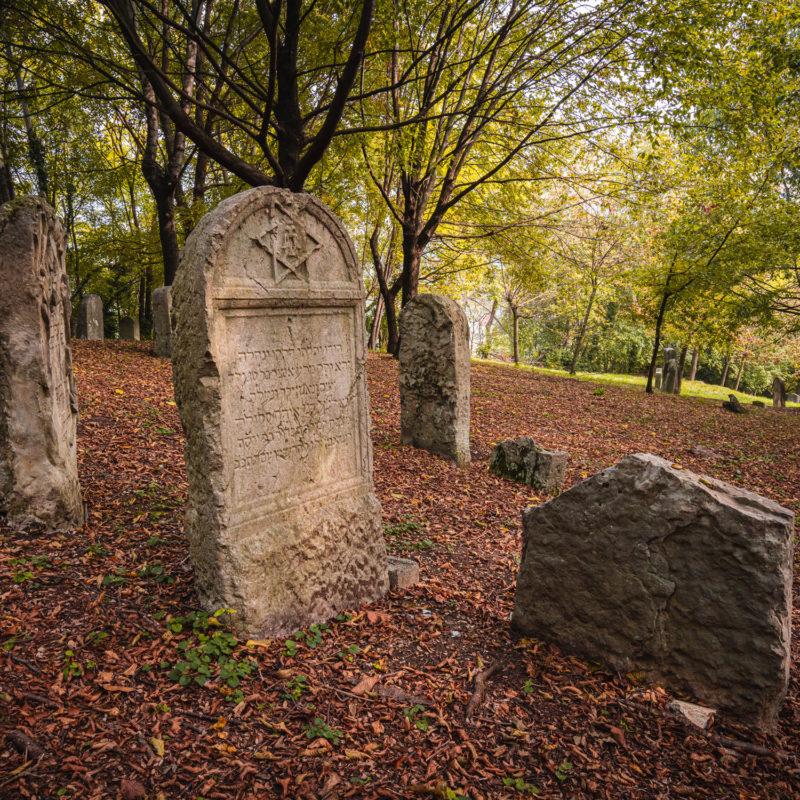La Memoria Ebraica - Visit Conegliano