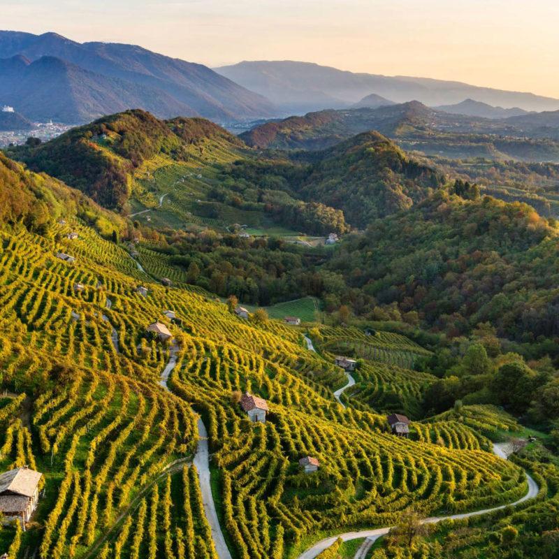 Alla scoperta dei tesori nascosti delle colline di Conegliano e Valdobbiadene - Visit Conegliano