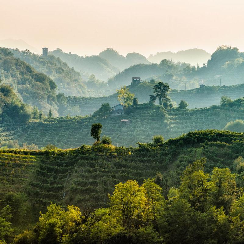 Die Unesco Hügel - Visit Conegliano