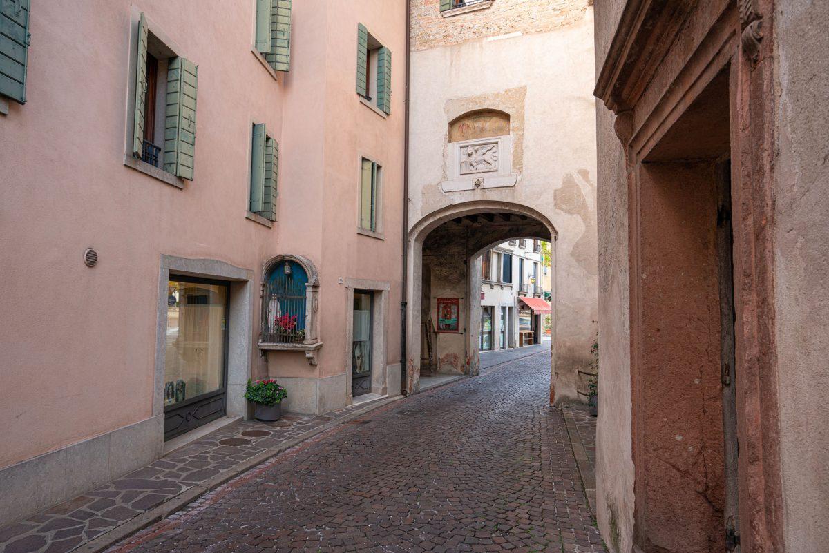 Porta del Monticano or del Leone