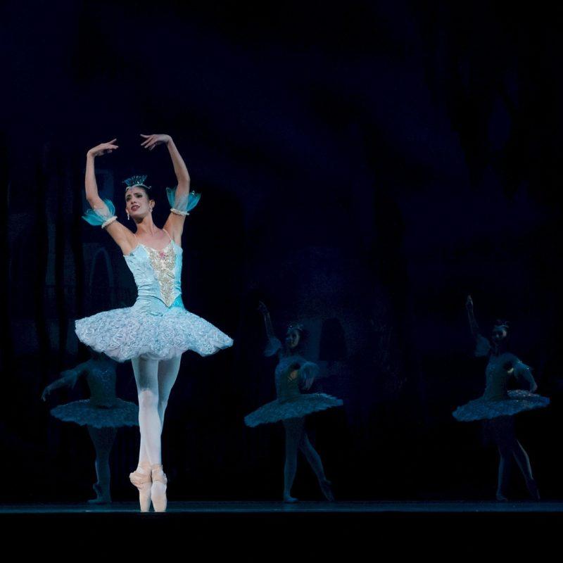 """St. Petersburg Ballet: """"Il Lago dei Cigni"""" - Visit Conegliano"""