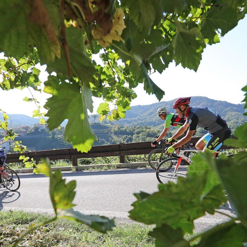Prosecco Cycling - Visit Conegliano