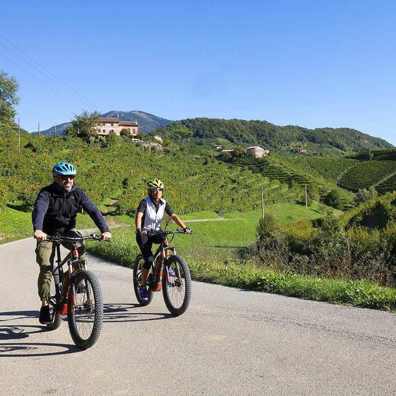 Bike Tour Prosecco - Visit Conegliano