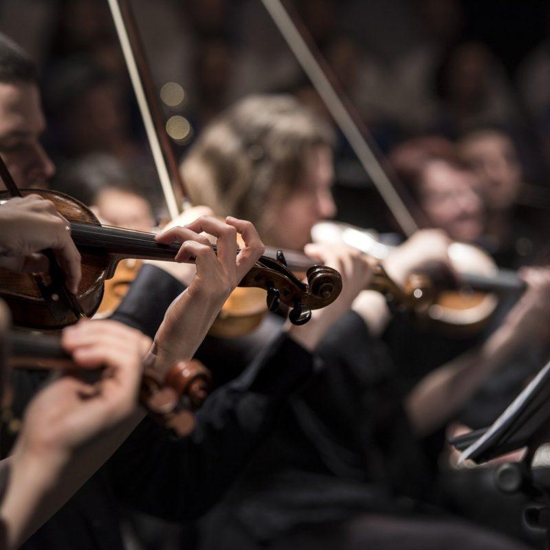 Concerti e serate musicali - Visit Conegliano